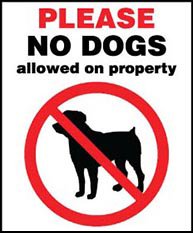 Please No Dogs Allowed on Property